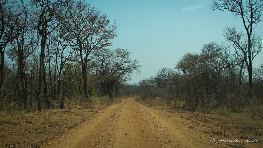 Road from Kalomo to Kafue National Park