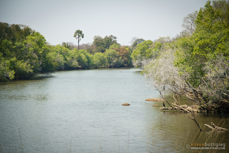 Lufupa River, Kafue National Park