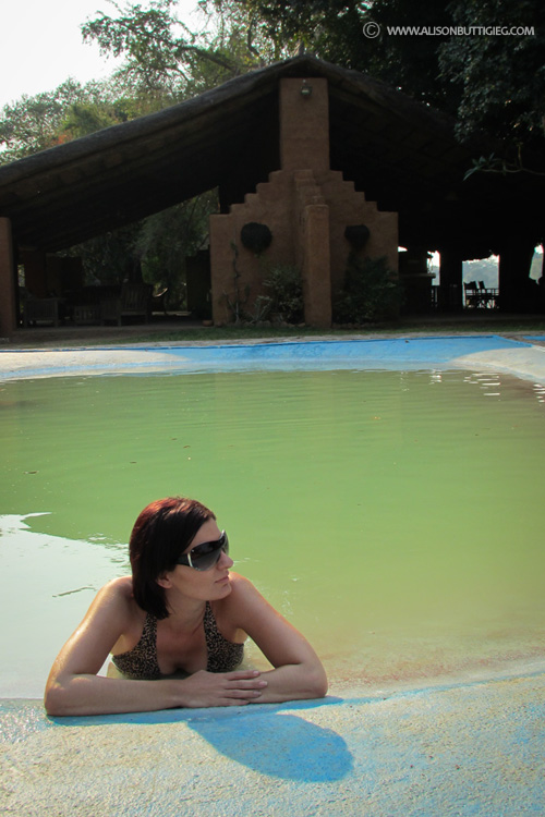 Enjoying the pool at Croc Valley