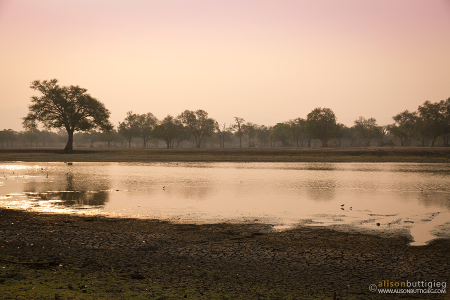 Long Pool, Mana Pools