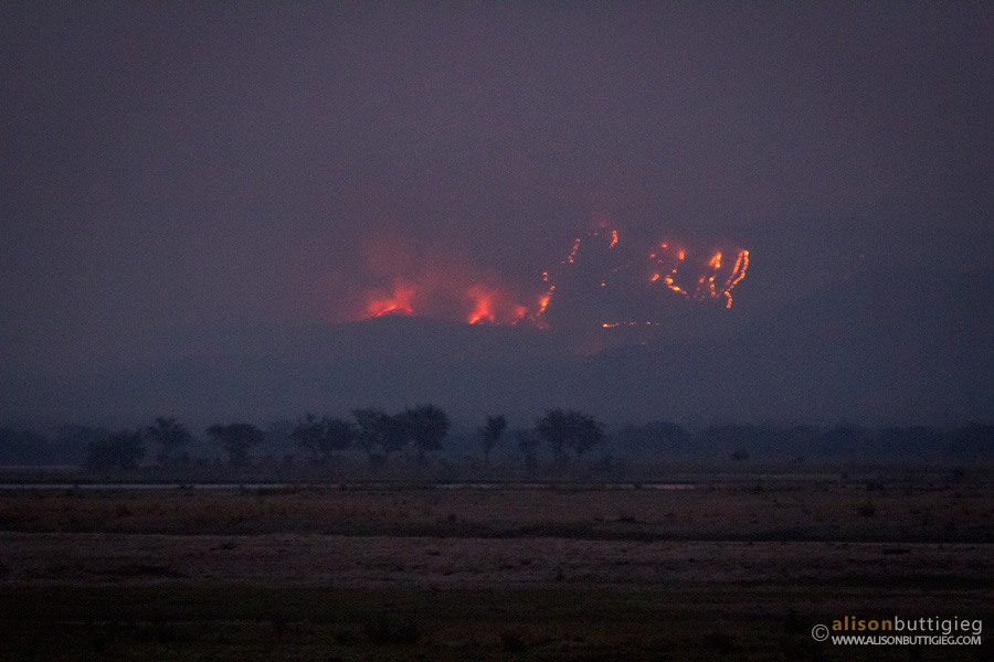 Zambia on Fire, Nkupe Campsite, Mana Pools