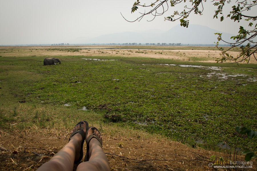 This is the life!  Nkupe Campsite, Mana Pools