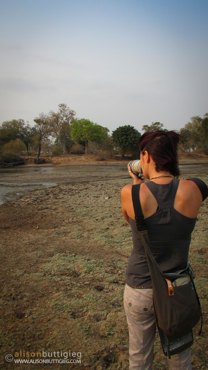 Walking safari, Mana Pools