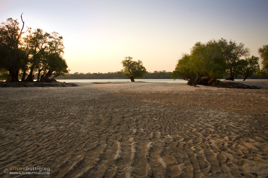 Sandy beach on one of the islands in the Zambezi