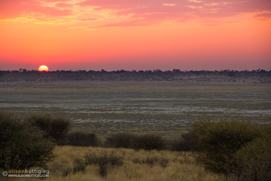 Sunrise over Mpaya Pan from the campsite